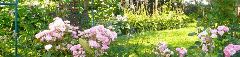 Zahradnictví a květinářství Beneš